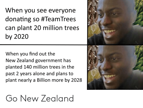 In The Past: When you see everyone  donating so #TeamTrees  can plant 20 million trees  by 2020  When you find out the  New Zealand government has  planted 140 million trees in the  past 2 years alone and plans to  plant nearly a Billion more by 2028 Go New Zealand