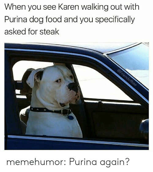 Food, Tumblr, and Blog: When you see Karen walking out with  Purina dog food and you specifically  asked for steak memehumor:  Purina again?