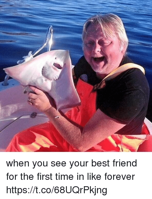 When You See Your Best Friend: when you see your best friend for the first time in like forever https://t.co/68UQrPkjng