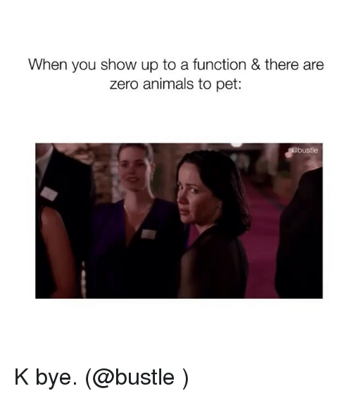 Animals, Memes, and Zero: When you show up to a function & there are  zero animals to pet:  bustle K bye. (@bustle )