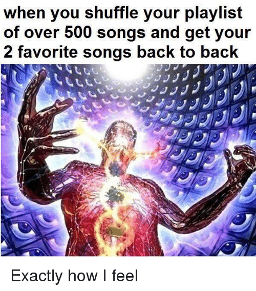 Back to Back, Songs, and Back: when you shuffle your playlist  of over 500 songs and get your  2 favorite songs back to bacK Exactly how I feel