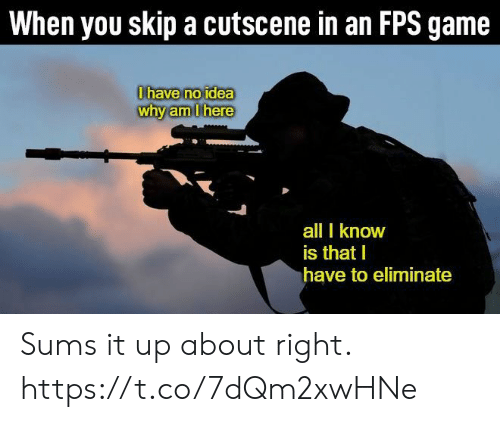 fps: When you skip a cutscene in an FPS game  0have no idea  why am Ihere  all I know  is that I  have to eliminate Sums it up about right. https://t.co/7dQm2xwHNe