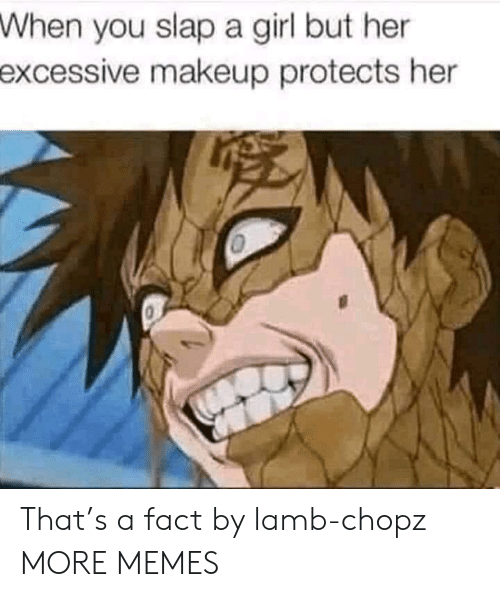 lamb: When  you slap a girl but her  excessive  makeup protects her That's a fact by lamb-chopz MORE MEMES