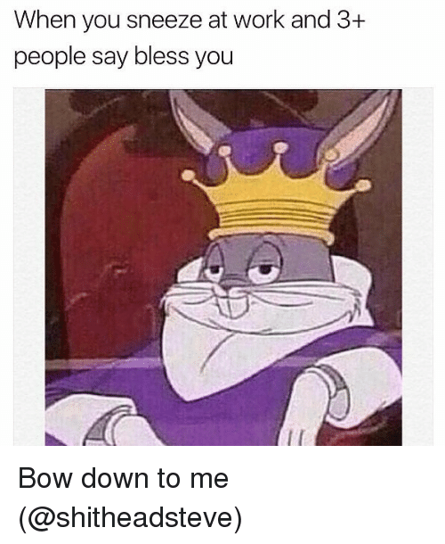 Bow Down: When you sneeze at work and 3+  people say bless you Bow down to me (@shitheadsteve)