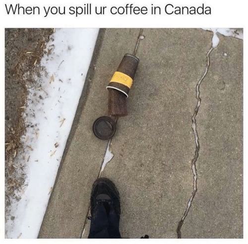 Canada, Coffee, and You: When you spill ur coffee in Canada