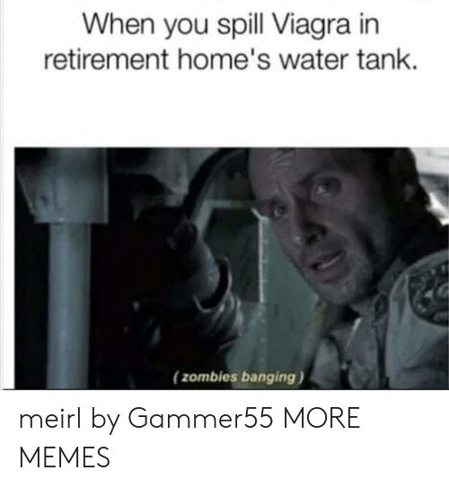 Dank, Memes, and Target: When you spill Viagra in  retirement home's water tank  (zombies banging) meirl by Gammer55 MORE MEMES