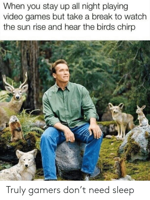 Take A Break: When you stay up all night playing  video games but take a break to watch  the sun rise and hear the birds chirp Truly gamers don't need sleep