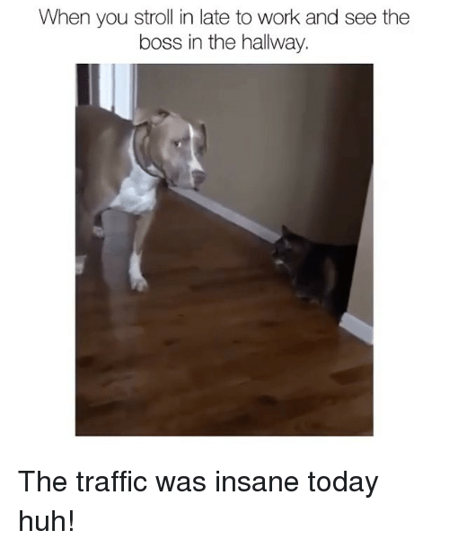 Huh, Memes, and Traffic: When you stroll in late to work and see the  boss in the hallway. The traffic was insane today huh!