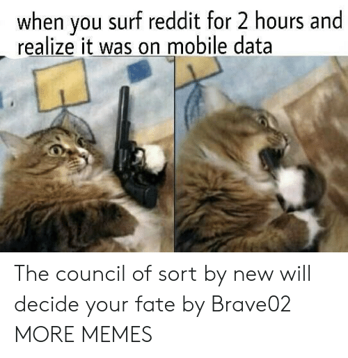 Dank, Memes, and Reddit: when you surf reddit for 2 hours and  realize it was on mobile data The council of sort by new will decide your fate by Brave02 MORE MEMES