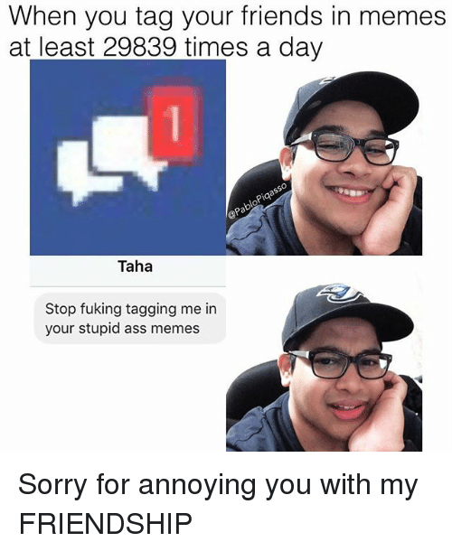 pia: When you tag your friends in memes  at least 29839 times a day  pia  OP  Taha  Stop fuking tagging me in  your stupid ass memes Sorry for annoying you with my FRIENDSHIP