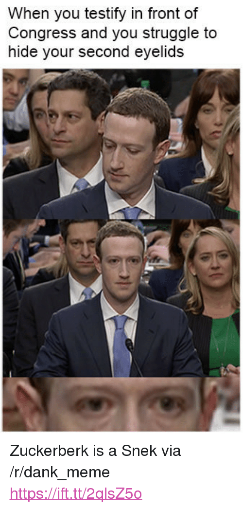 "Dank, Meme, and Struggle: When you testify in front of  Congress and you struggle to  hide your second eyelids <p>Zuckerberk is a Snek via /r/dank_meme <a href=""https://ift.tt/2qlsZ5o"">https://ift.tt/2qlsZ5o</a></p>"