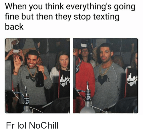 Funny, Lol, and Texting: When you think everything's going  fine but then they stop texting  back Fr lol NoChill
