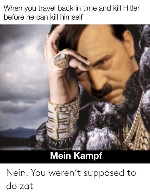 Kill Hitler: When you travel back in time and kill Hitler  before he can kill himself  Mein Kampf Nein! You weren't supposed to do zat