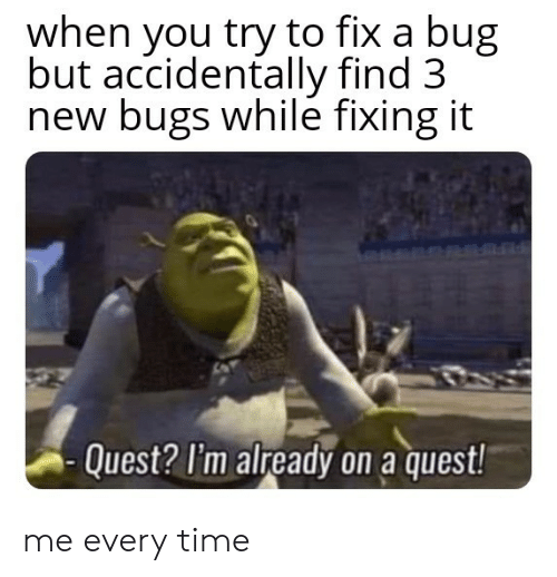 Quest, Time, and Bug: when you try to fix a bug  but accidentally find 3  new bugs while fixing it  Quest? I'm already on a quest! me every time