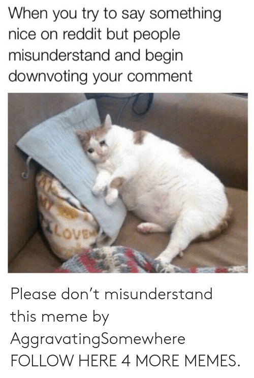 Commenter: When you try to say something  nice on reddit but people  misunderstand and begin  downvoting your comment  ove Please don't misunderstand this meme by AggravatingSomewhere FOLLOW HERE 4 MORE MEMES.