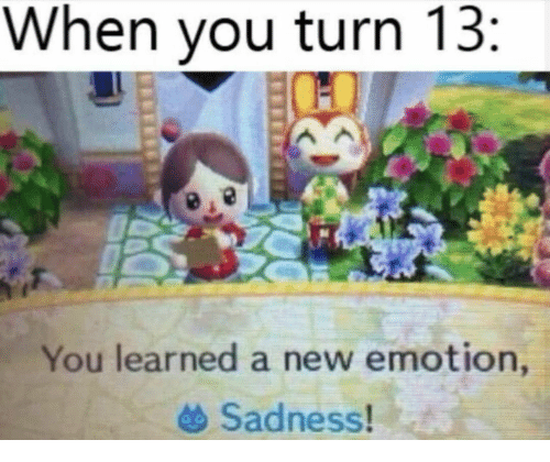 Rey, Sadness, and New: When you turn 13:  You learned a new emotion,  Sadness!  REY