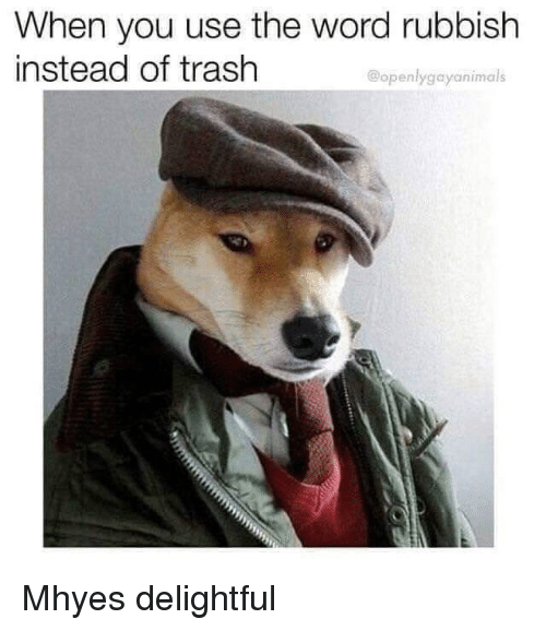 rubbish: When you use the word rubbish  instead of trash  @openlygayanimals Mhyes delightful