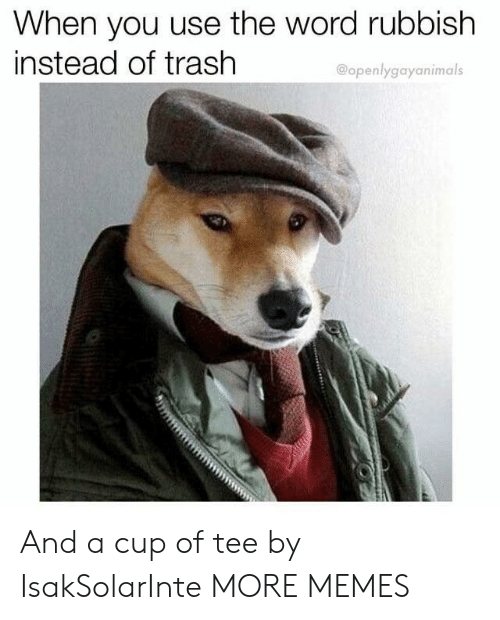 rubbish: When you use the word rubbish  instead of trash  @openlygayanimals And a cup of tee by IsakSolarInte MORE MEMES