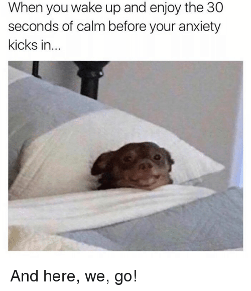 And Here We Go: When you wake up and enjoy the 30  seconds of calm before your anxiety  kicks in And here, we, go!