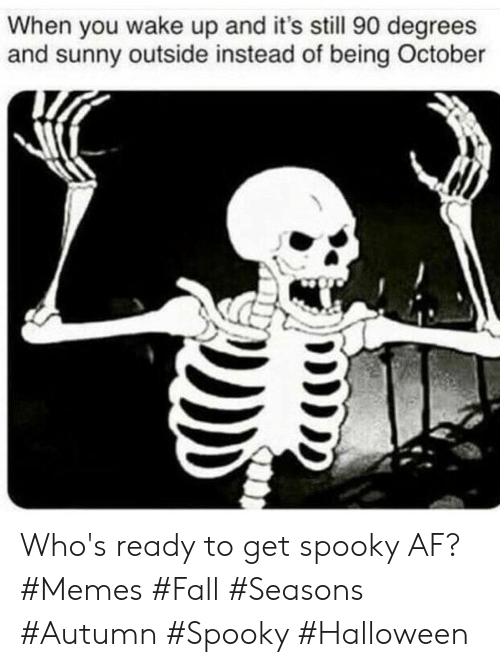 when you wake up: When you wake up and it's still 90 degrees  and sunny outside instead of being October Who's ready to get spooky AF? #Memes #Fall #Seasons #Autumn #Spooky #Halloween