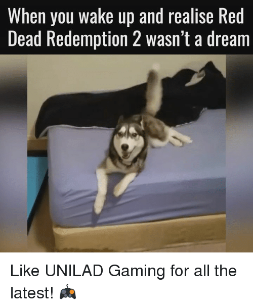 A Dream, Dank, and Ups: When you wake up and realise Red  Dead Redemption 2 wasn't a dream Like UNILAD Gaming for all the latest! 🎮
