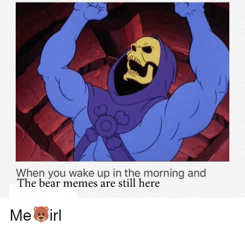 Bears Memes: When you wake up in the morning and  The bear memes are still here Me🐻irl