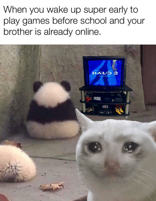 Halo: When you wake up super early to  play games before school and your  brother is already online.  HALO 2