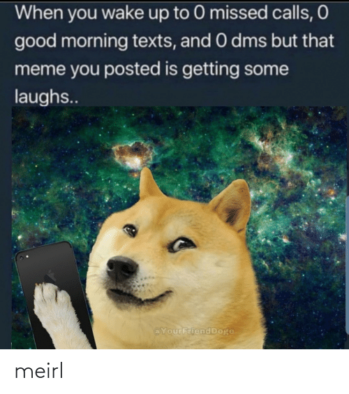 Missed Calls: When you wake up to 0 missed calls, O  good morning texts, and 0 dms but that  meme you posted is getting some  laughs..  @YourFriend Doge meirl
