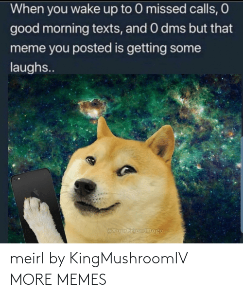 Dank, Doge, and Meme: When you wake up to 0 missed calls, O  good morning texts, and 0 dms but that  meme you posted is getting some  laughs..  @YourFriend Doge meirl by KingMushroomIV MORE MEMES