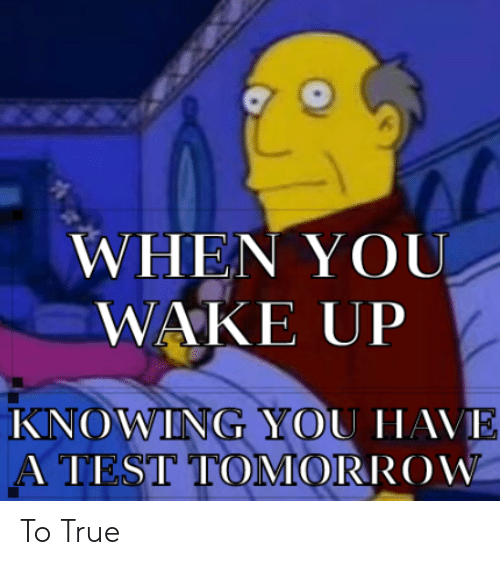 True, Dank Memes, and Wake: WHEN YOU  WAKE UP  WING YOU  | | | SI IC)MORROW To True