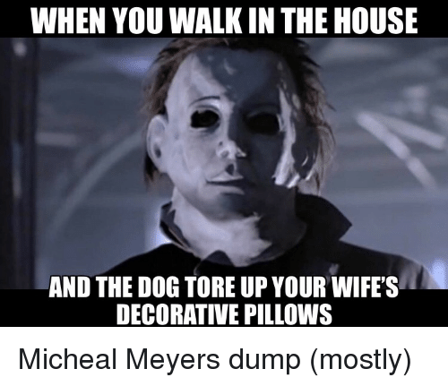 pillows: WHEN YOU WALK IN THE HOUSE  AND THE DOG TORE UP YOUR WIFE'S  DECORATIVE PILLOWS Micheal Meyers dump (mostly)