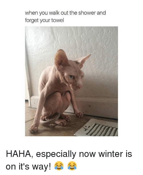 Winter Is