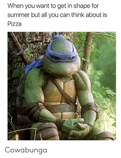 Dank, Pizza, and Summer: When you want to get in shape for  summer but all you can think about is  Pizza Cowabunga