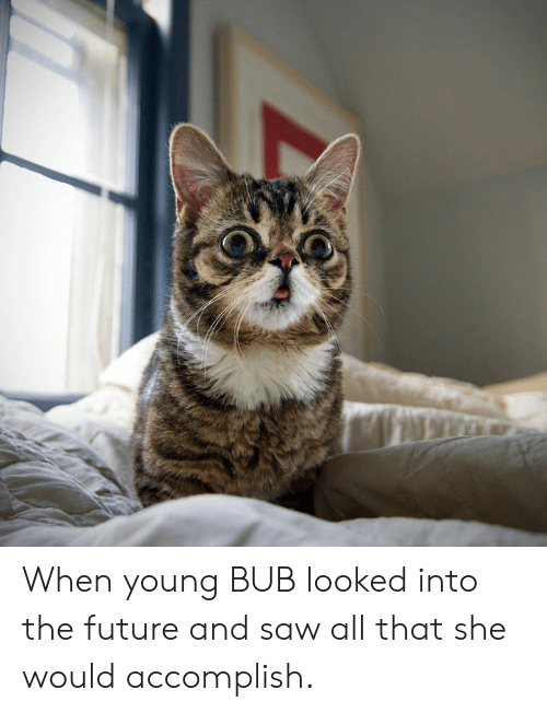 Future, Memes, and Saw: When young BUB looked into the future and saw all that she would accomplish.