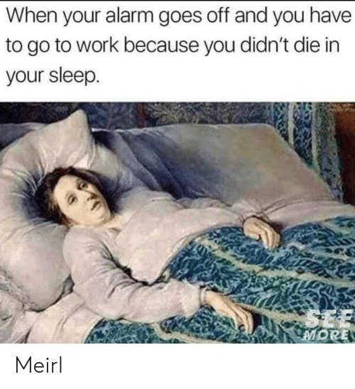 When Your Alarm Goes Off: When your alarm goes off and you have  to go to work because you didn't die in  your sleep.  SEE  MORE Meirl