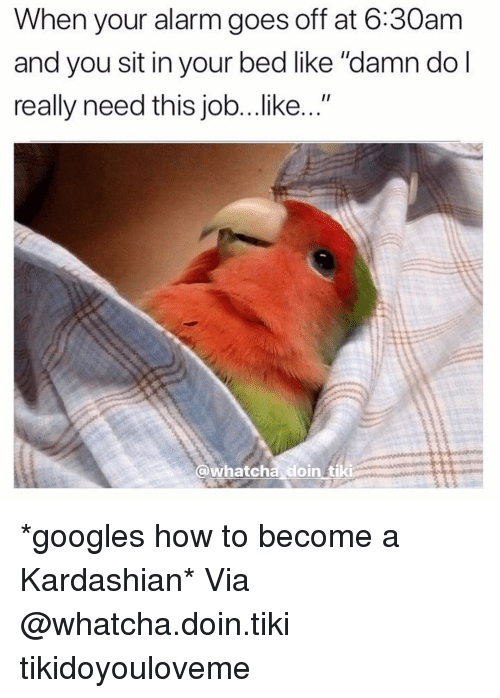 """When Your Alarm Goes Off: When your alarm goes off at 6:30am  and you sit in your bed like """"damn dol  really need this job...like...""""  @whatcha doin tiki *googles how to become a Kardashian* Via @whatcha.doin.tiki tikidoyouloveme"""