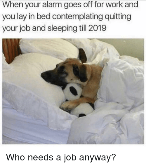 When Your Alarm Goes Off: When your alarm goes off for work and  you lay in bed contemplating quitting  your job and sleeping till 2019 Who needs a job anyway?