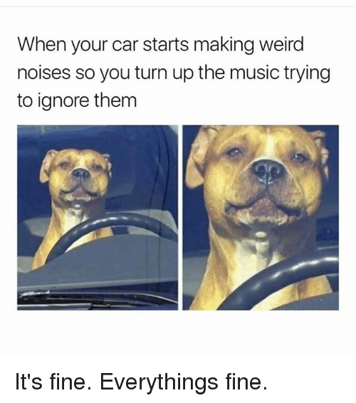 Music, Turn Up, and Weird: When your car starts making weird  noises so you turn up the music trying  to ignore them It's fine. Everythings fine.