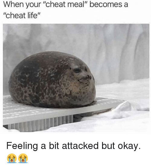 """Life, Memes, and Okay: When your """"cheat meal"""" becomes a  """"cheat life"""" Feeling a bit attacked but okay. 😭😭"""