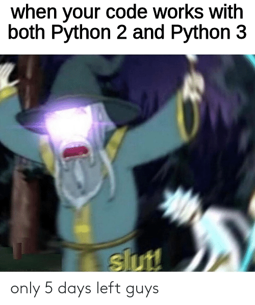 slut: when your code works with  both Python 2 and Python 3  slut! only 5 days left guys