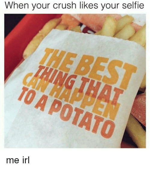 When Your Crush: When your crush likes your selfie  THE  TO A POTATO me irl