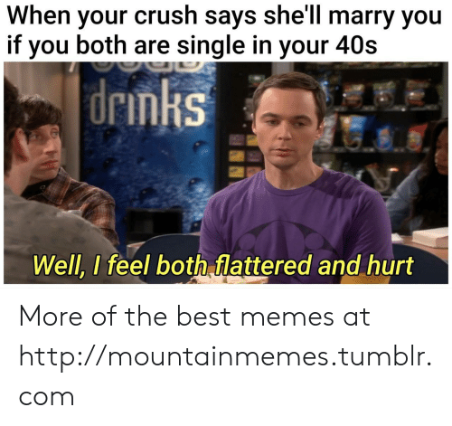 When Your Crush: When your crush says she'll marry you  if you both are single in your 40s  drinks  Well, I feel both flattered and hurt More of the best memes at http://mountainmemes.tumblr.com