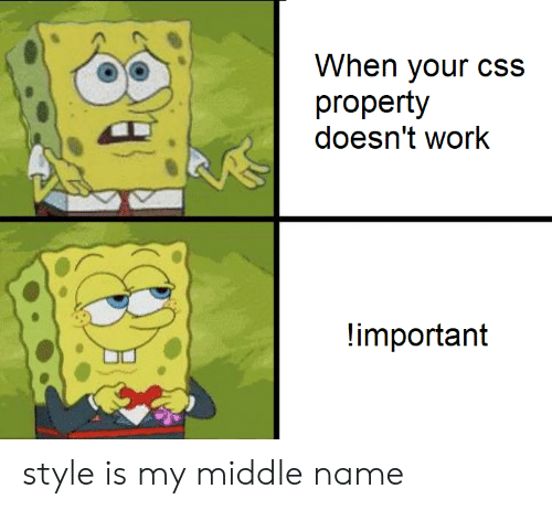 css: When your cSs  property  doesn't work  important style is my middle name