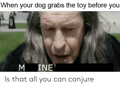 Lord of the Rings, Dog, and Can: When your dog grabs the toy before you  M INE Is that all you can conjure