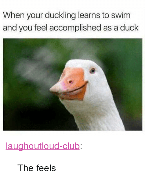 """Club, Tumblr, and Blog: When your duckling learns to swim  and you feel accomplished as a duck <p><a href=""""http://laughoutloud-club.tumblr.com/post/172554328545/the-feels"""" class=""""tumblr_blog"""">laughoutloud-club</a>:</p>  <blockquote><p>The feels</p></blockquote>"""