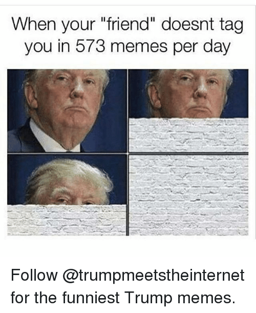 """Trump Memes: When your """"friend"""" doesnt tag  you in 573 memes per day Follow @trumpmeetstheinternet for the funniest Trump memes."""