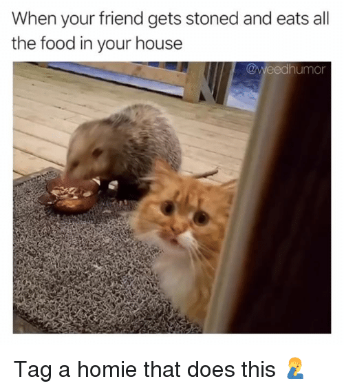 Food, Homie, and Weed: When your friend gets stoned and eats all  the food in your house  @weedhumor Tag a homie that does this 🤦♂️