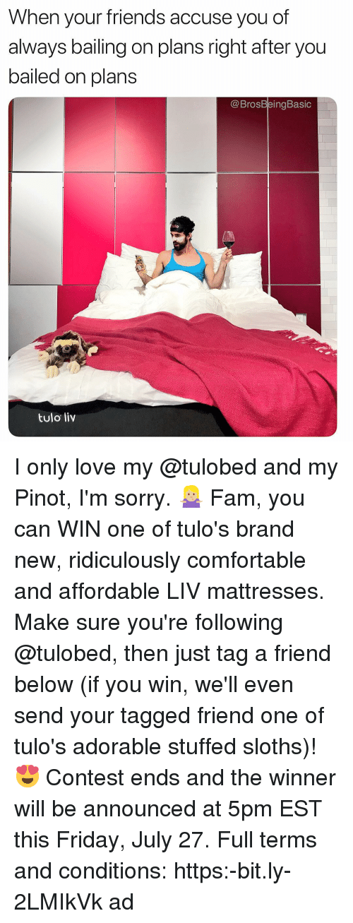 Comfortable, Fam, and Friday: When your friends accuse you of  always bailing on plans right after you  bailed on plans  @BrosBeingBasic  ulo  tulo liv I only love my @tulobed and my Pinot, I'm sorry. 🤷🏼‍♀️ Fam, you can WIN one of tulo's brand new, ridiculously comfortable and affordable LIV mattresses. Make sure you're following @tulobed, then just tag a friend below (if you win, we'll even send your tagged friend one of tulo's adorable stuffed sloths)! 😍 Contest ends and the winner will be announced at 5pm EST this Friday, July 27. Full terms and conditions: https:-bit.ly-2LMIkVk ad