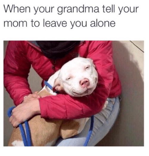 Being Alone, Grandma, and Memes: When your grandma tell your  mom to leave you alone