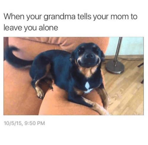 Being Alone, Dank, and Grandma: When your grandma tells your mom to  leave you alone  10/5/15, 9:50 PM